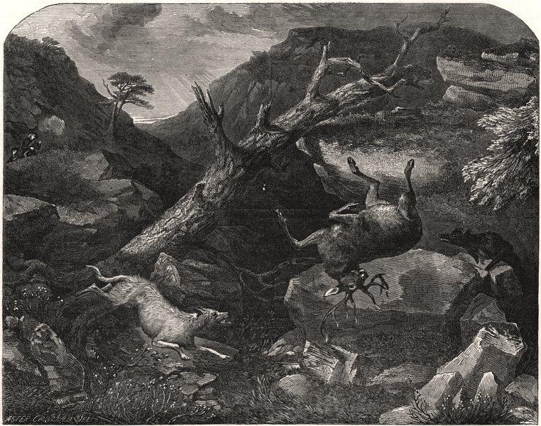 Associate Product Deer-stalking. The falling deer, antique print, 1849