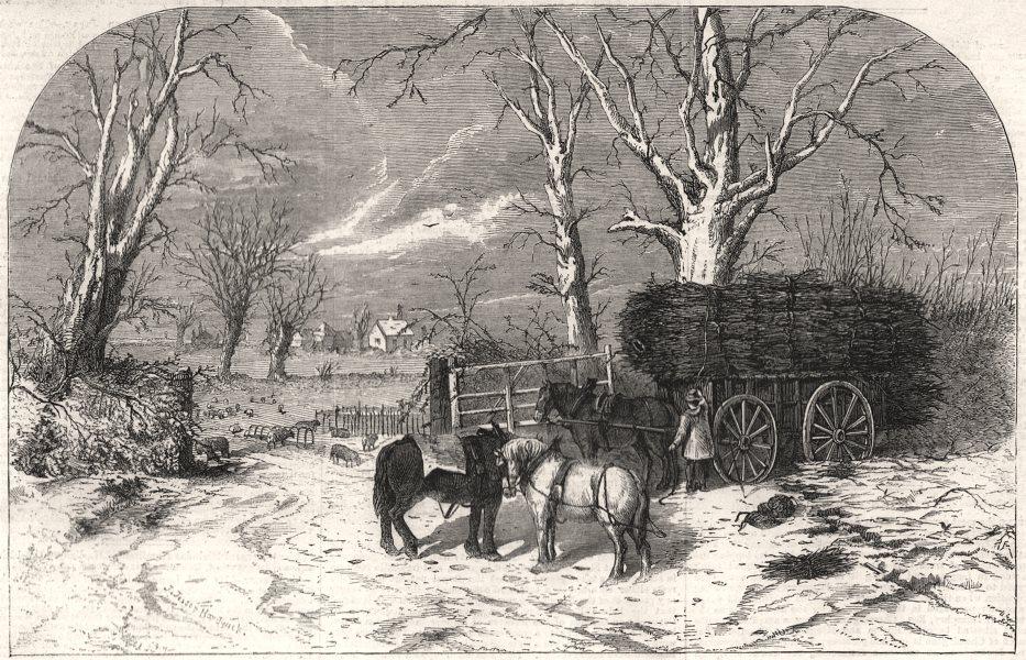 Associate Product Carting faggots for Christmas: a scene at Chessington, near Epsom. London, 1859