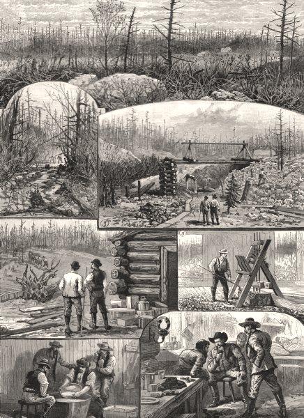Associate Product Denison Gold-Mines, Algoma, Lake Huron, Canada. Tough & Ranger. Tamarac, 1888