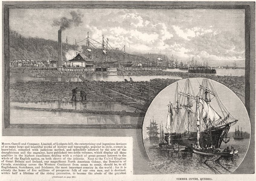 Associate Product Timber coves, Quebec. Canada, antique print, 1885