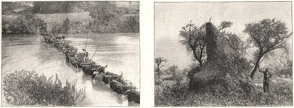 Associate Product Crossing a Transvaal river; an ant-hill in the Transvaal. South Africa, 1896