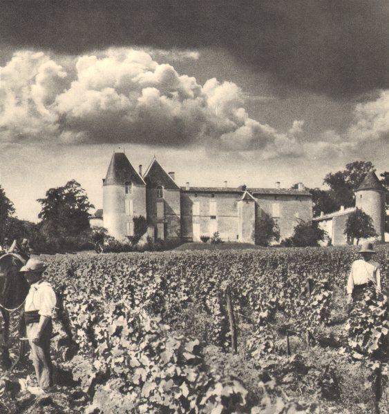 Associate Product BORDEAUX WINE. Le Premier des Grands Crus 1949 old vintage print picture