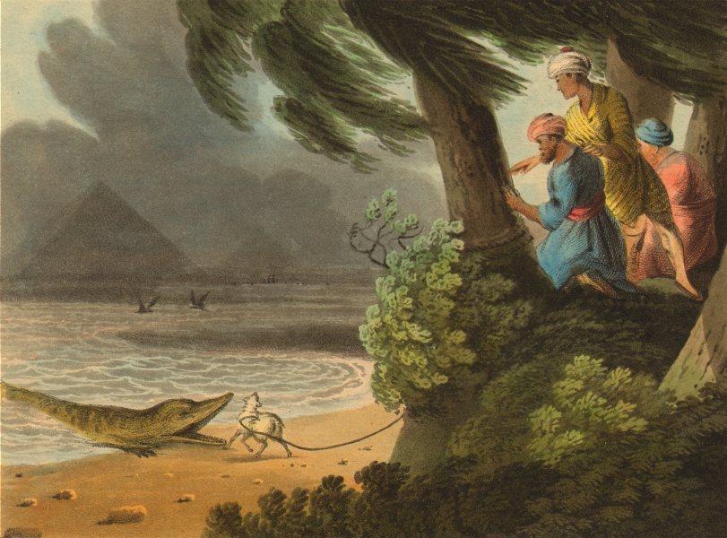Associate Product EGYPT. Crocodile catching Nile Pyramids. Lamb as bait (Edward Orme)  1814