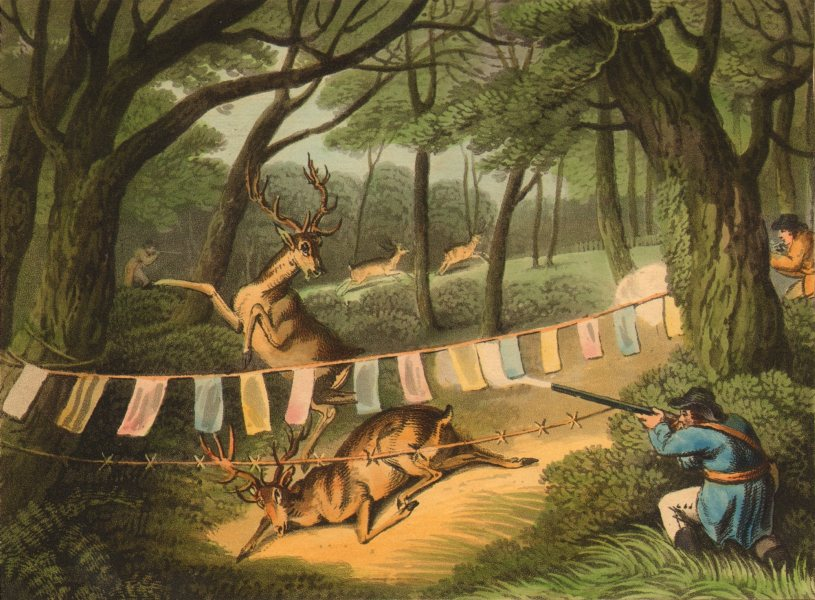 Associate Product GERMANY. Deer- shooting, with Decoy. Coloured flags (Edward Orme)  1814 print