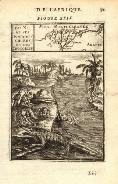 Associate Product NILE DELTA. Map showing towns. River view with crocodiles. Egypt. MALLET 1683