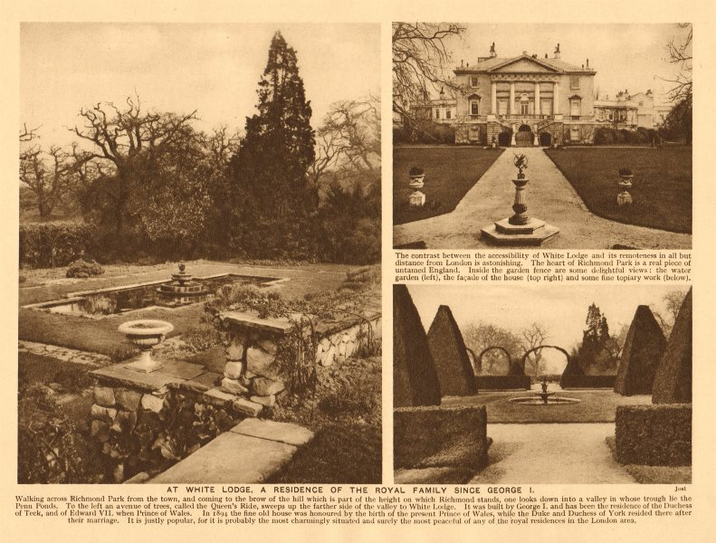 Associate Product Richmond Park. White Lodge, Royal residence since George I 1926 old print