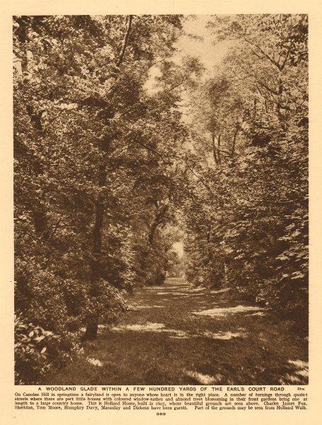 Associate Product Camden/Campden Hill, Holland Park, A woodland glade 1926 old vintage print