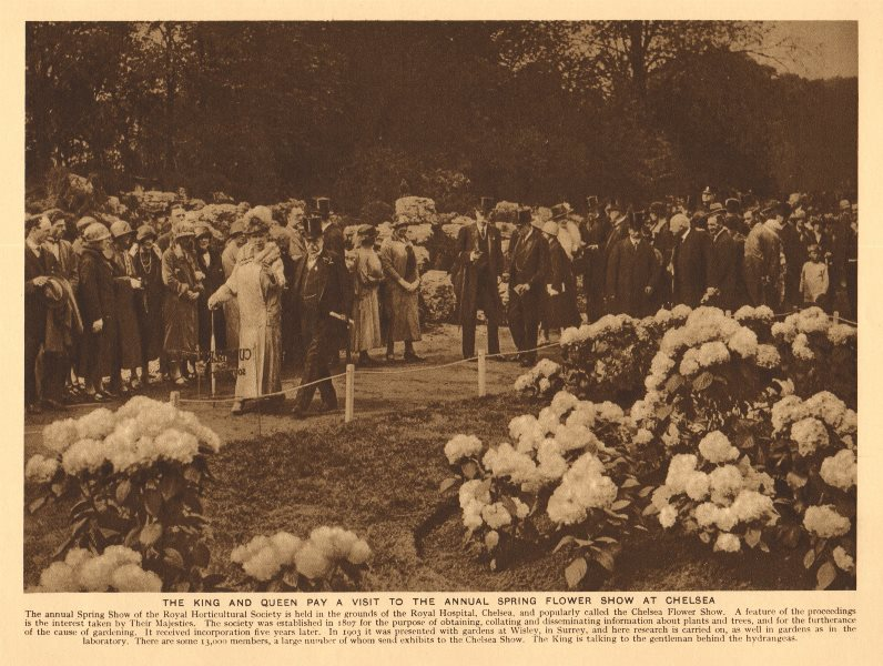 Associate Product King George V & Queen Mary of Teck visit the Chelsea Flower Show 1926 print