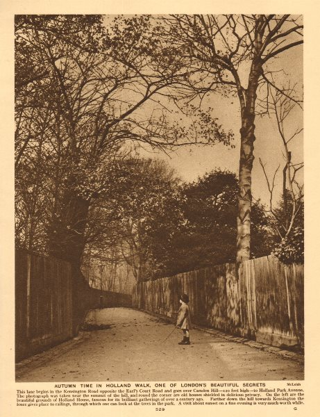 Associate Product Autumn Time in Holland Walk, Holland Park. Campden Hill. Child 1926 old print