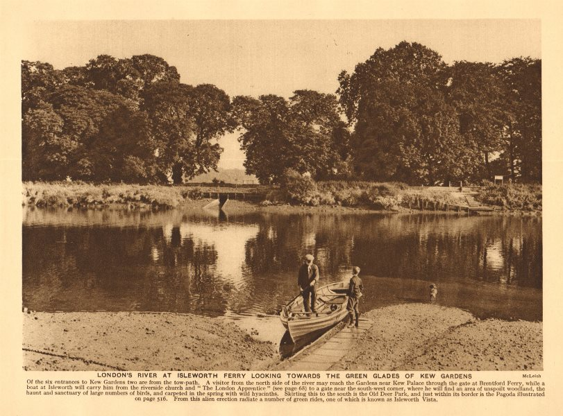 Associate Product Thames at Isleworth Ferry looking towards Kew Gardens. Rowing boat 1926 print