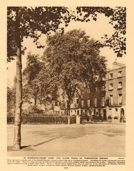 Associate Product The plane trees of Torrington Square, Bloomsbury 1926 old vintage print