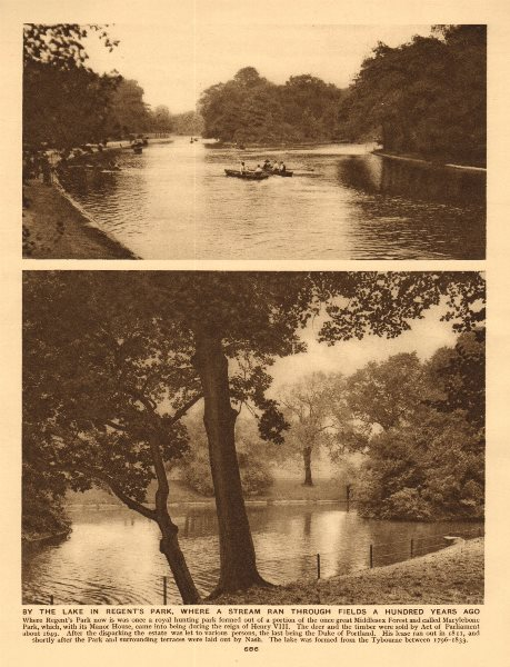 Associate Product By the lake in Regent's Park 1926 old vintage print picture