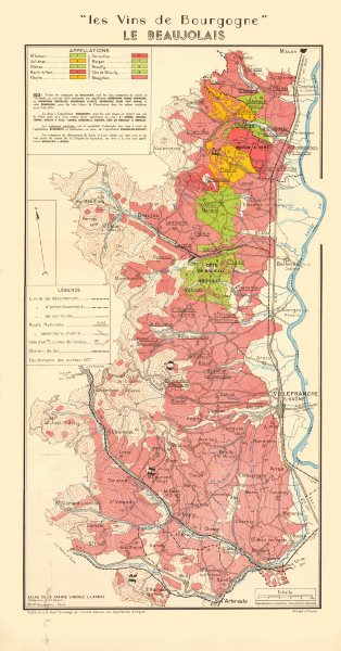 Associate Product BURGUNDY BOURGOGNE WINE MAP Beaujolais appellations.Fleurie Brouilly LARMAT 1953