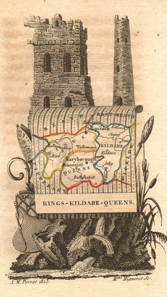 Associate Product KINGS & QUEENS COUNTY (OFFALY / LAOIS) & KILDARE antique county map. PERROT 1824