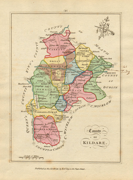 Associate Product County of Kildare, Leinster. Antique copperplate map by Scalé / Sayer 1788