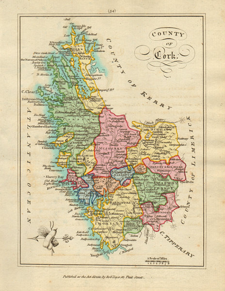 Associate Product County of Cork, Munster. Antique copperplate map by Scalé / Sayer 1788 old