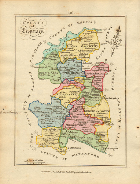 Associate Product County of Tipperary, Munster. Antique copperplate map by Scalé / Sayer 1788