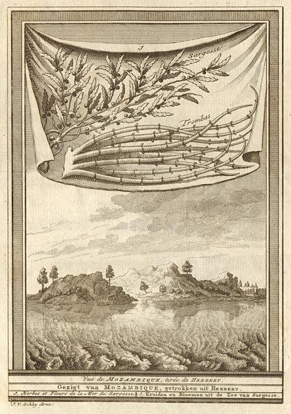 Associate Product 'Vue de Mozambique'. View of Mozambique island, from Herbert. SCHLEY 1747