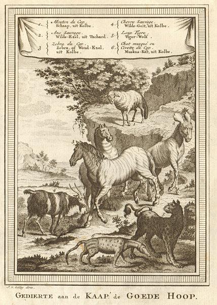 Associate Product South Africa. Cape Sheep Zebra ass goat. Tiger Wolf. Musk cat Civet. SCHLEY 1748