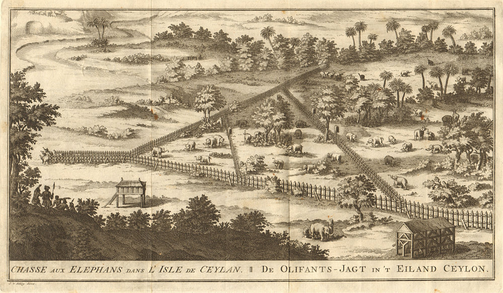 Associate Product 'Chasse aux éléphans… I'Isle de Ceylan'. Elephants Ceylon Sri Lanka. SCHLEY 1755