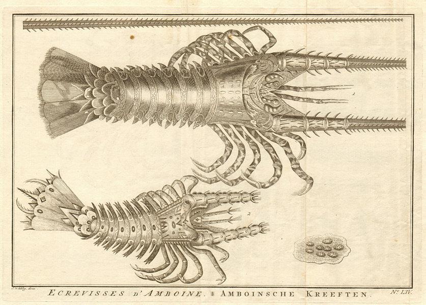 Associate Product LIV - Ecrevisses d'Amboine. Indonesia. Crayfish of Ambon. Maluku. SCHLEY 1763