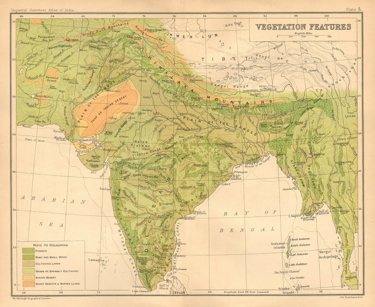 Associate Product SOUTH ASIA. BRITISH INDIA Vegetation forest bush desert cultivated 1909 map