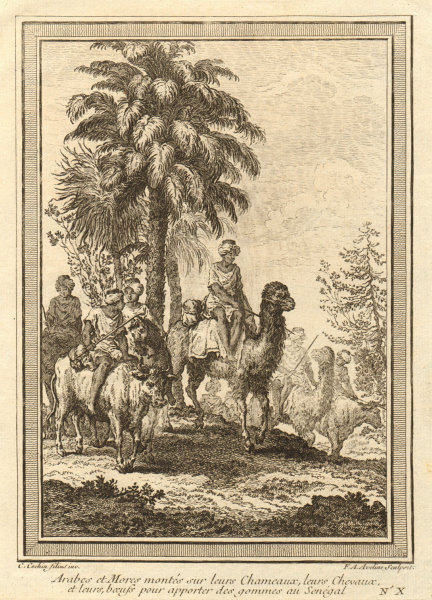 Associate Product Arabs & Moors on camels, horses & cattle bringing gum arabic to Senegal 1746