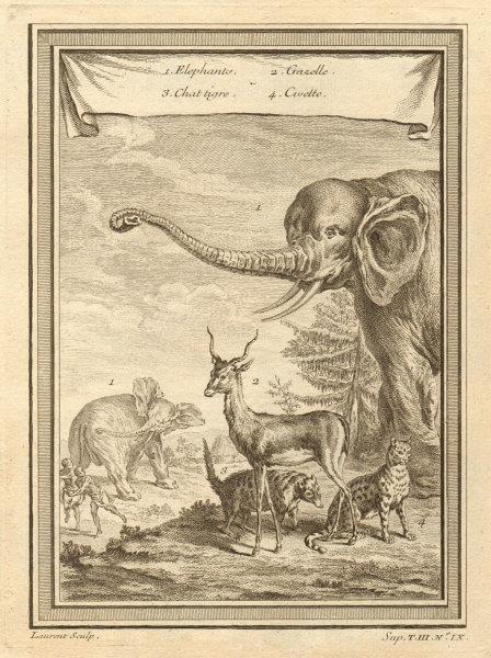 """Associate Product African animals. Elephants """"Tiger Cat"""" (hyena) Gazelle Civet. Mammals 1747"""