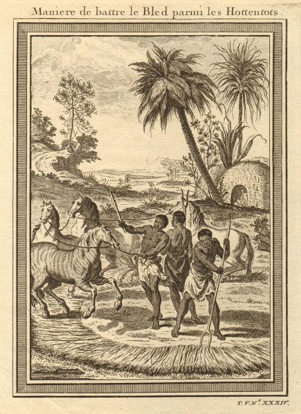 Associate Product Southern Africa. Hottentot / Khoikhoi corn threshing method using horses 1748
