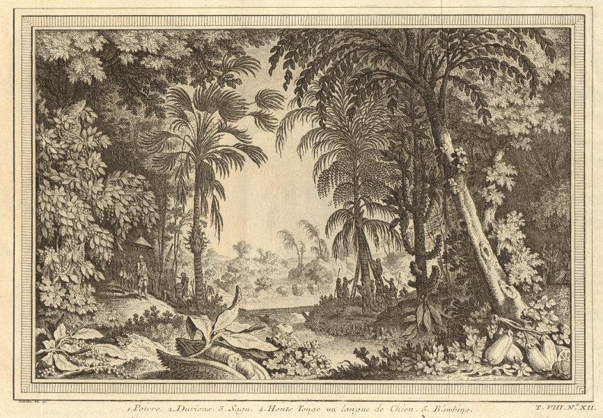Associate Product Tropical fruit & vegetables. Pepper. Durian. Sago. Dog Tongue. Bilimbi 1750