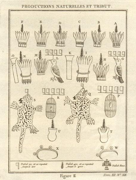Aztec tributes & products. Birds feathers wild cat / jaguar skins 1754 print