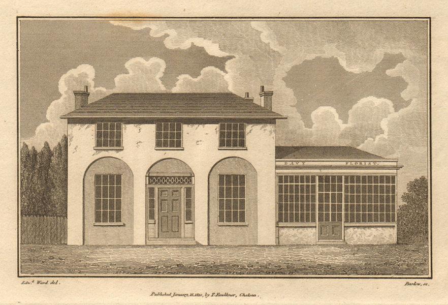 Associate Product Davy's Florist, Chelsea. Chelsea flower show, London 1810 old antique print