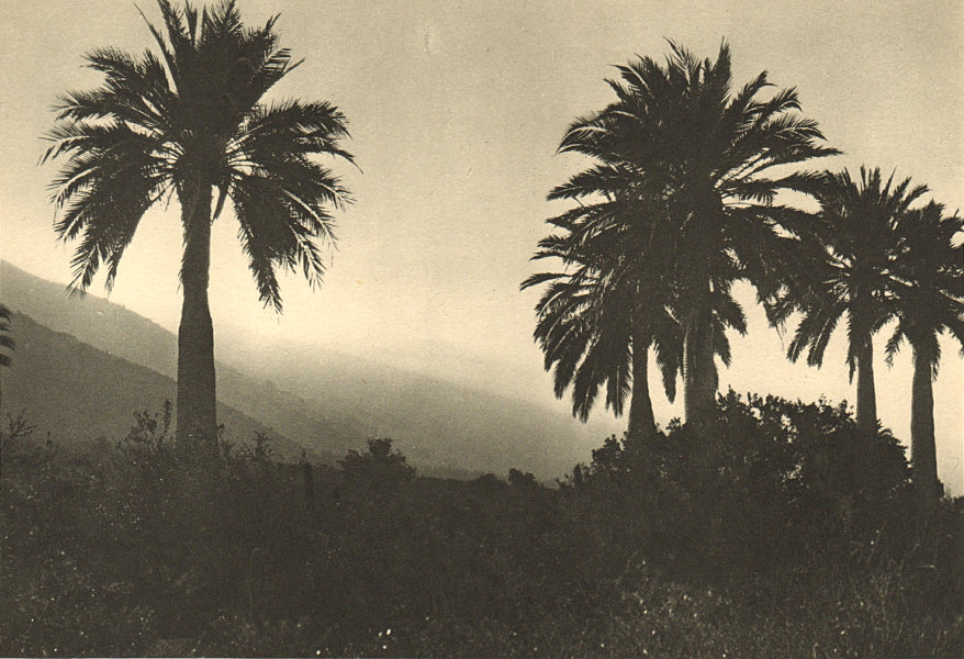 Associate Product CHILE. Ocoa. Crepusculo. Twilight 1932 old vintage print picture