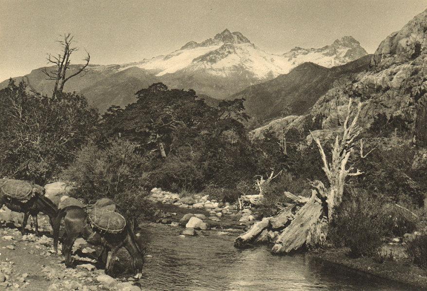 Associate Product CHILE. Rio Trubunleo. Sierra Velluda 1932 old vintage print picture