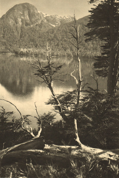 Associate Product CHILE. Lago / Lake Spronle 1932 old vintage print picture