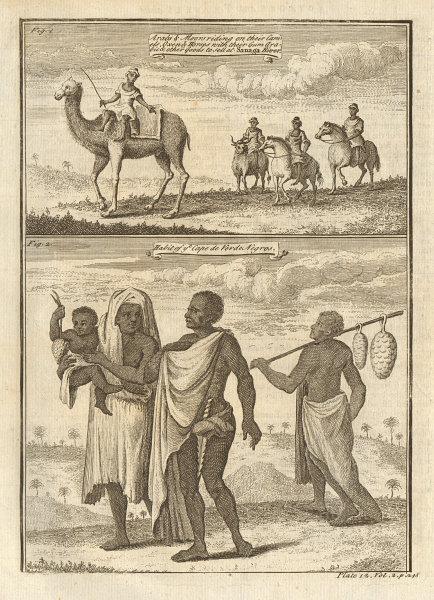 Arabs & Moors on camels horses cattle bringing gum arabic to Senegal 1745