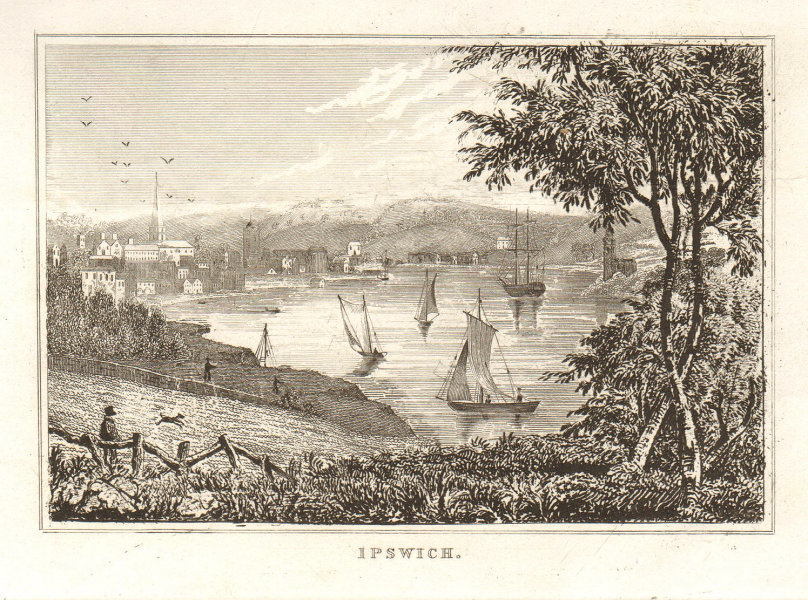 View of the city of Ipswich. Sailing boats. Suffolk. DUGDALE 1845 old print