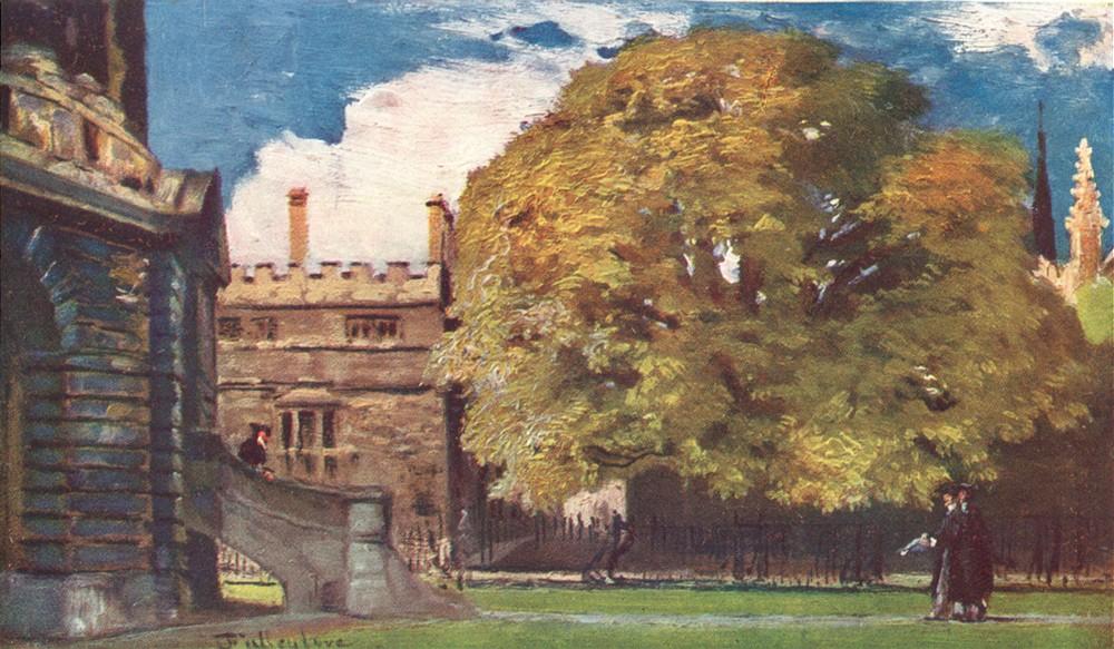 Associate Product OXFORD. Bishop Heber's Tree 1903 old antique vintage print picture