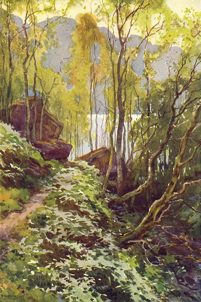 Associate Product The Old Pass, Trossachs. Scotland. By Ernest Haslehust 1920 vintage print