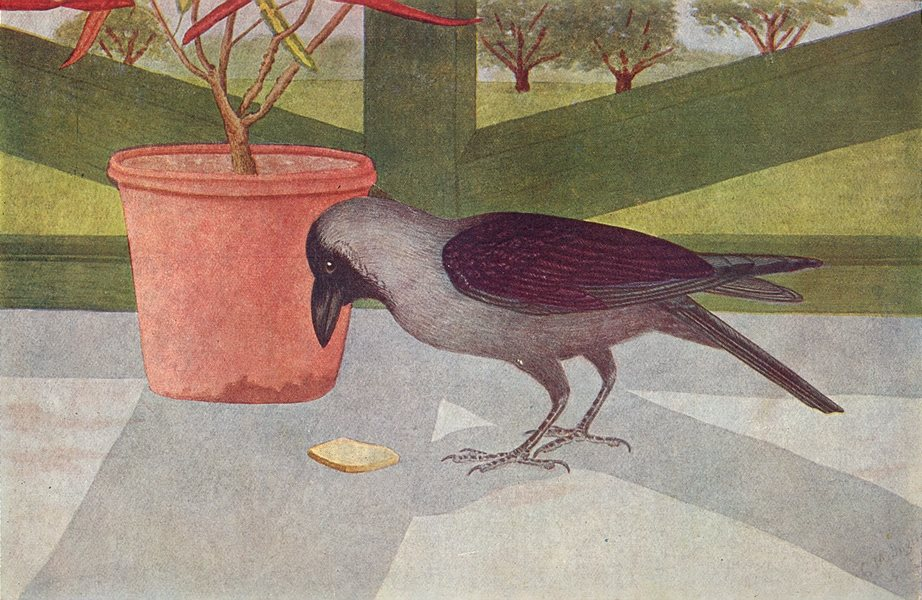 Associate Product BIRDS OF INDIA. The Indian House-Crow (Corvus splendens) 1924 old print