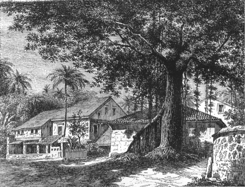Associate Product INDIA. View of a street in Mazagaon, Mumbai c1880 old antique print picture