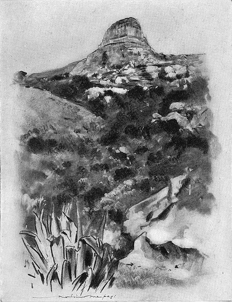 Associate Product SOUTH AFRICA. Hill Country near Bloemfontein 1920 old vintage print picture
