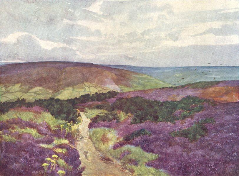 Associate Product YORKS. Esk Valley. Sleights Moor from Swart Howe Cross 1908 old antique print