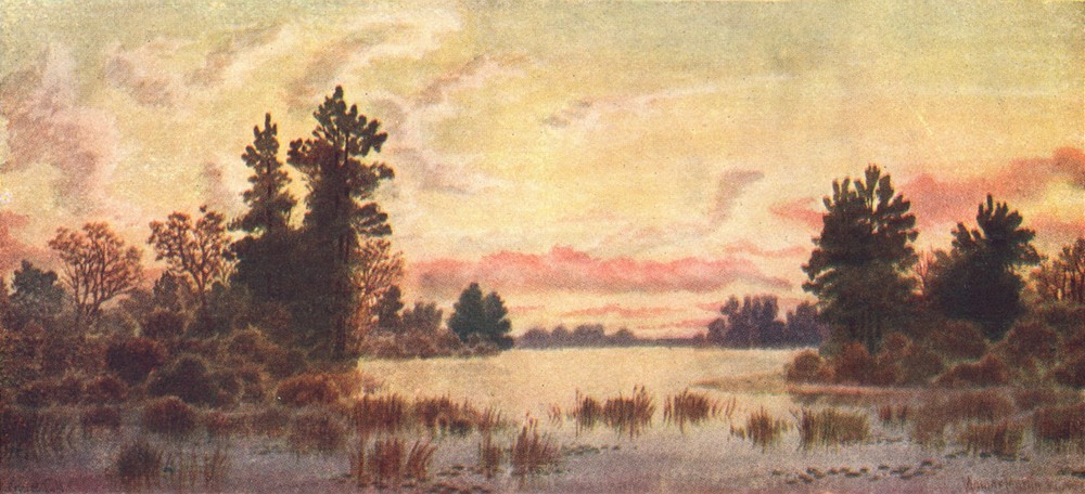 Associate Product CANADA. Canadian lake Region. Sunset, Canoe, Parry Sound 1907 old print