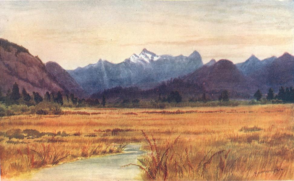 Associate Product CANADA. Prairie Provinces. Pitt Meadows, Fraser river, British Columbia 1907