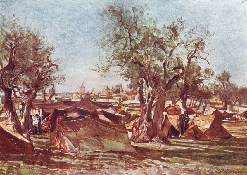 Associate Product JERUSALEM. Bedouin Camp, North wall of 1902 old antique vintage print picture