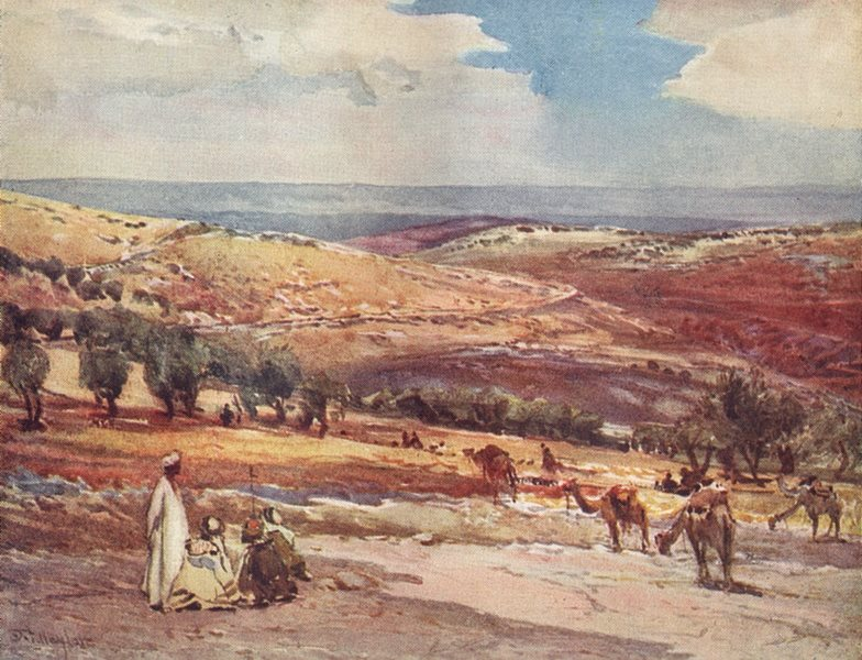 Associate Product ISRAEL. On the road from Jerusalem to Bethany 1902 old antique print picture