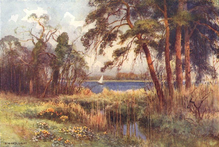 Wroxham Broad, early spring. Norfolk. By Ernest Haslehust 1920 old print
