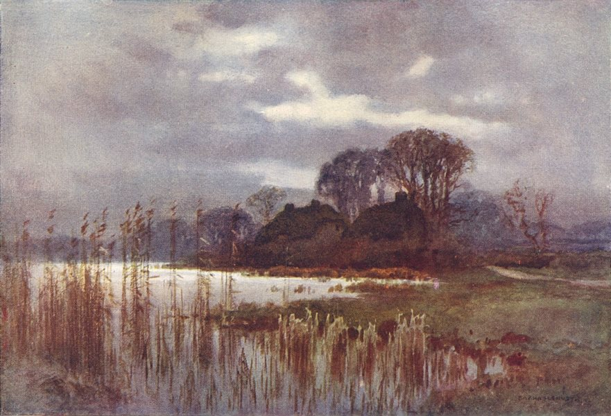 Associate Product The Mill Pond, Beaulieu, the New Forest. Hampshire. By Ernest Haslehust 1920