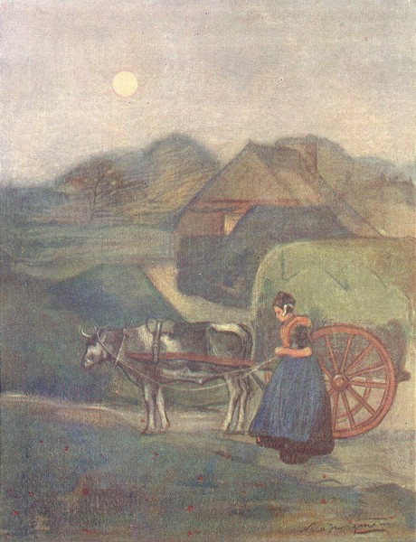 Associate Product NETHERLANDS. Gelderland. An Ox-cart, Gelderland 1904 old antique print picture